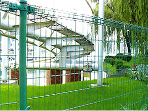 Double Loop Fence Anping County Tailong Wire Mesh