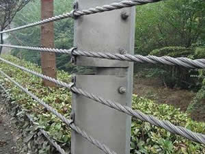 Cable Rope Fence Anping County Tailong Wire Mesh Products